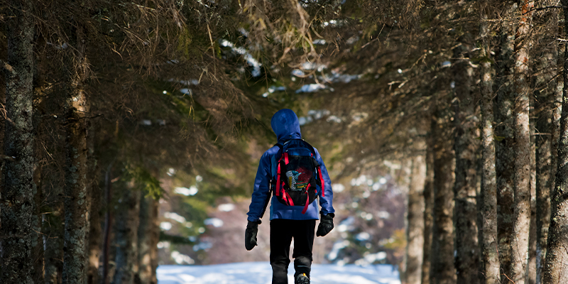Escape Midweek to Lake Louise and enjoy the trails.