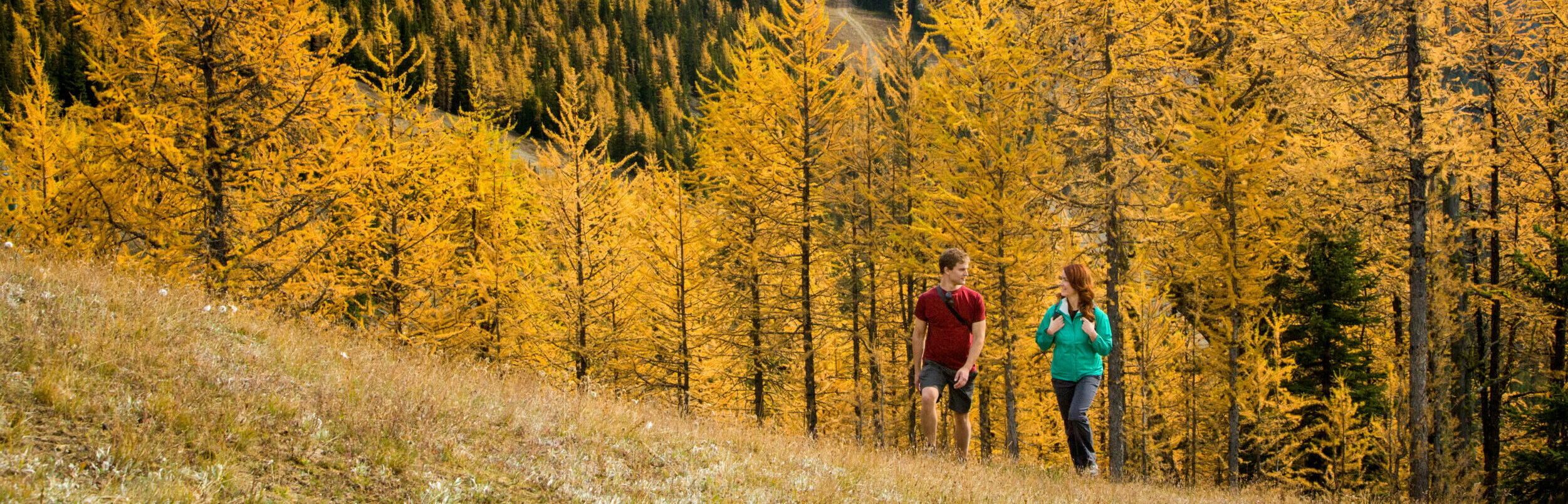 fall hotel deals in canadian rockies