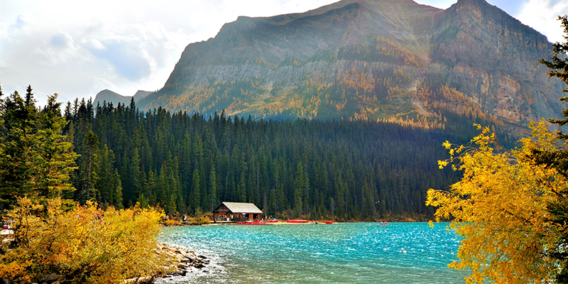 The Boathouse surrounded by Golden Larches   Fall activities in Lake Louise